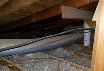 The Way to a Crawl Space with Nothing Crawling in it | Attic Cleaning Canoga Park, CA